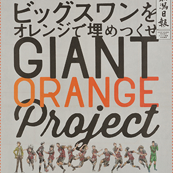 GIANT ORANGE Project